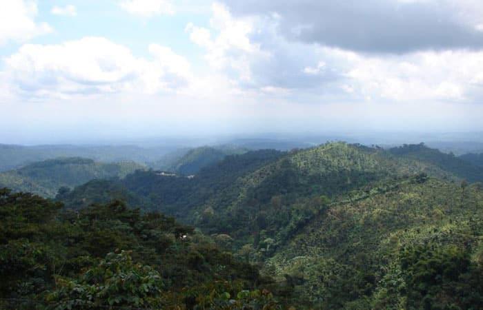 Landbouwproject_guatemala